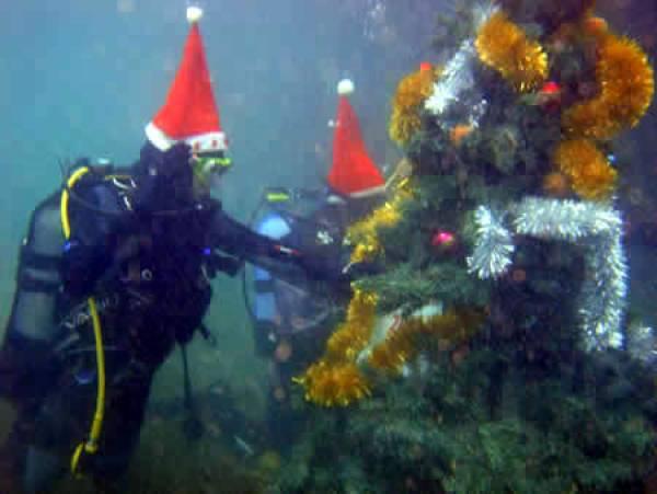 Откажано е китењето на подводната елка во Охрид