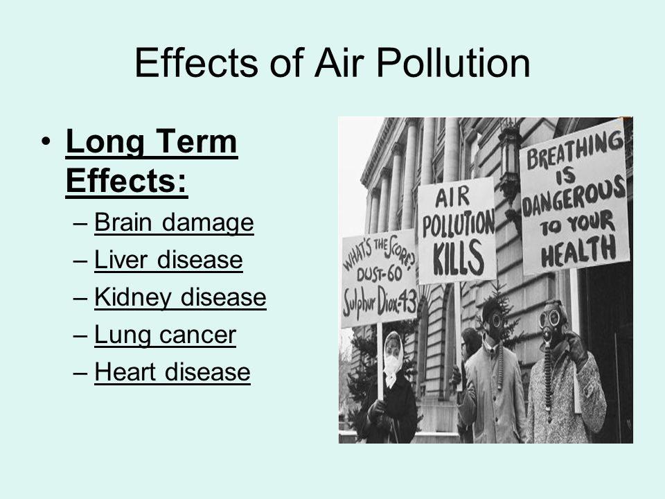 Загадениот воздух штетно влијае и на бубрезите