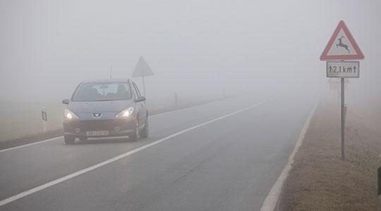 Намалена видливост поради магла на патот Штип – Неготино