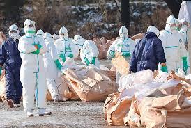 Внимавајте: На Косово се појави птичји грип