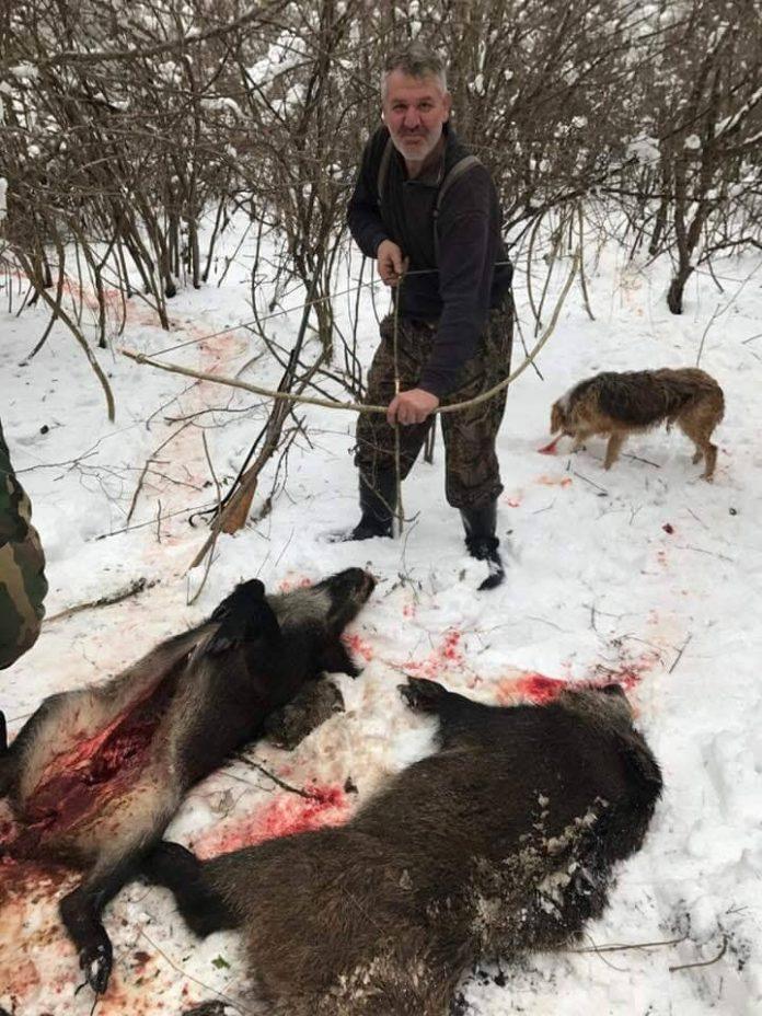 Поранешниот градоначалник на Росоман убива диви свињи со стрела и се фали на фејсбук