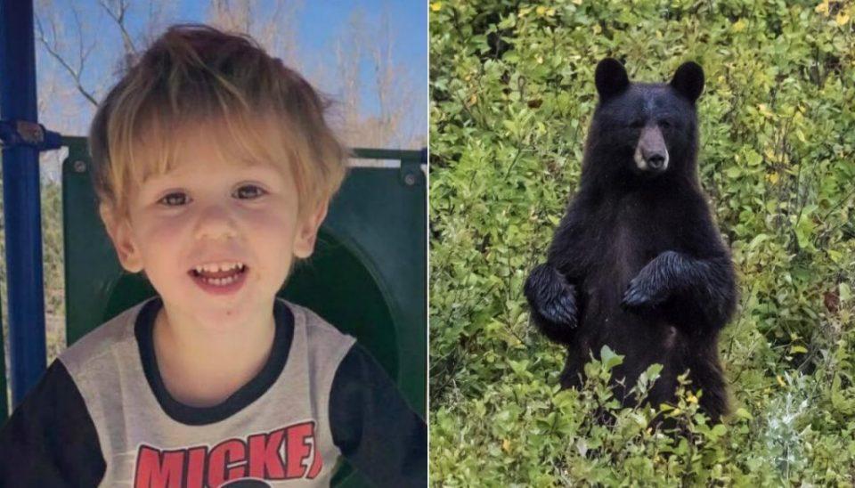 Тригодишно дете две ноќи само во шума: Ме чуваше мечка