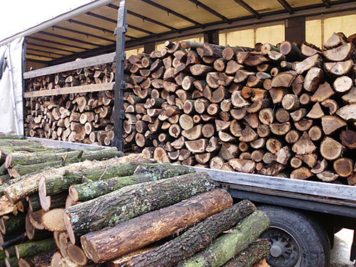 Кавадарчанец крадел дрва, па се заканувал со моторна пила – полицијата го фатила на заминување