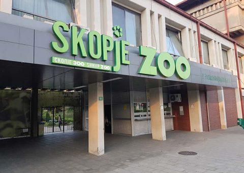 Зоолошката градина во Скопје бара уметници, графичари и скулптори за разубавување на патеките, реквизитите и играчките…