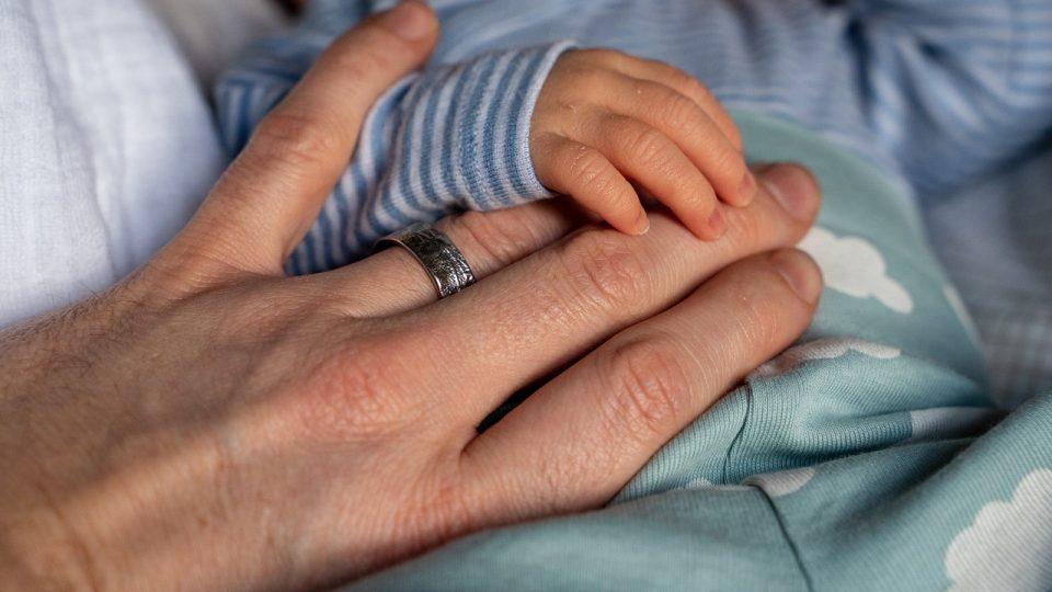 На породилно ќе одат и татковците