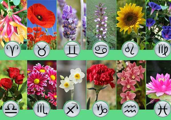 Што да ѝ подарите за 8 Март според нејзиниот хороскопски знак