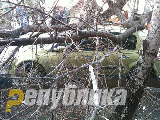 Откорнати дрвја и кровни конструкции: Силниот ветер направи пустош во Гевгелија