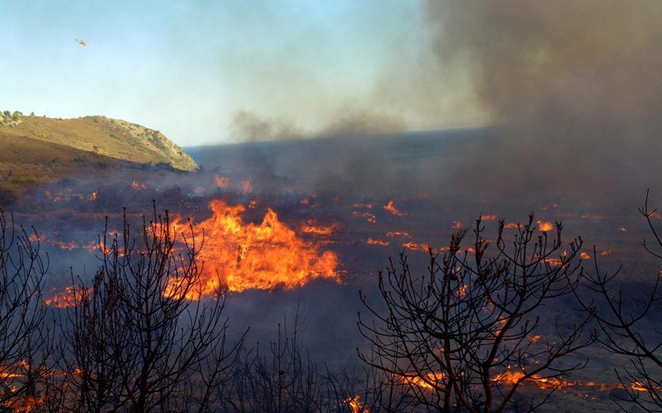 Шумски пожар над скопското селото Буковиќ