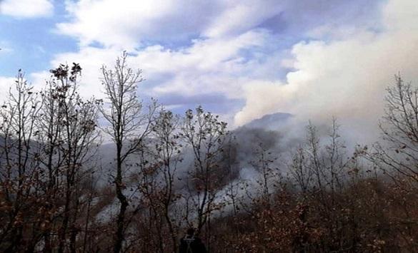 Фатен крушевчанец додека потпалувал шумски пожар