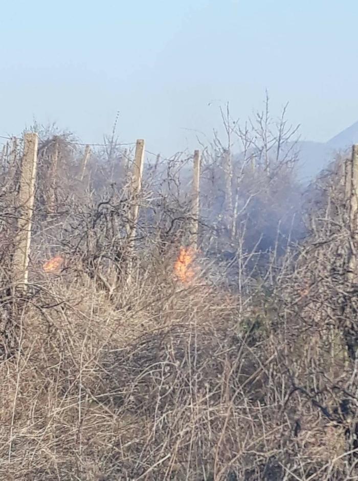 Пожарот кај Фариш се доближува до првите куќи