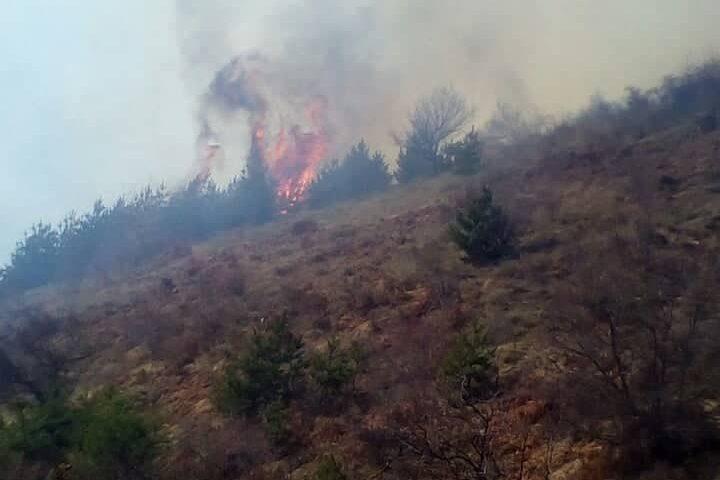 Надвор од контрола пожарот во село Саса