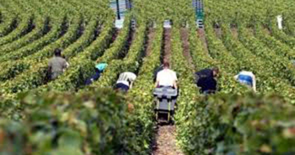 Земјоделците со посебна дозвола ќе одат на нива за време на викендите