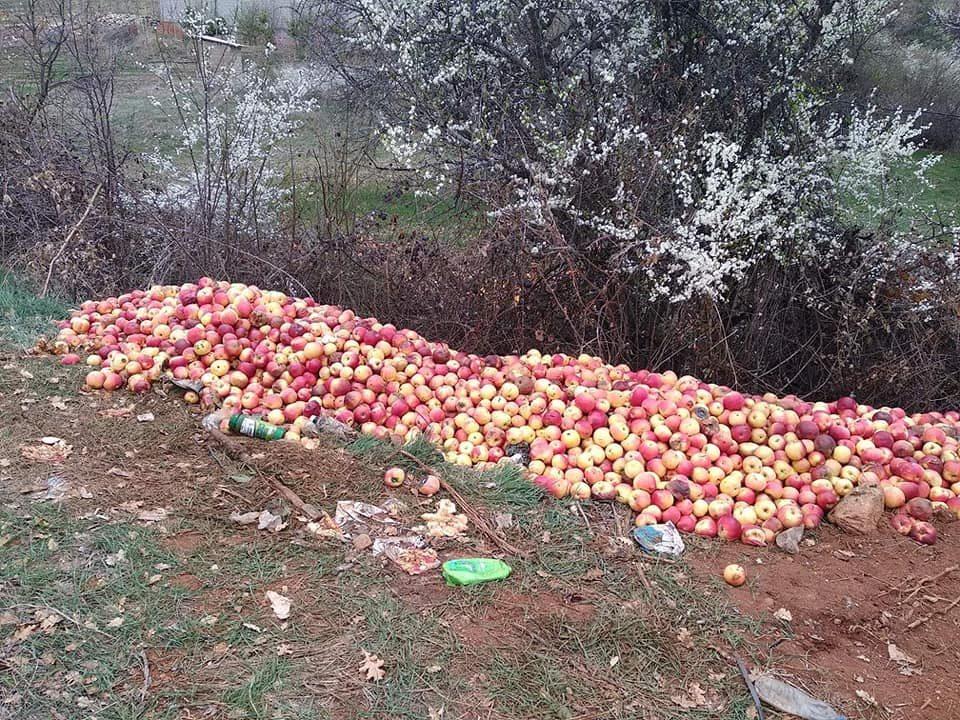 Тажна слика од Преспа: Јаболката завршија покрај патот