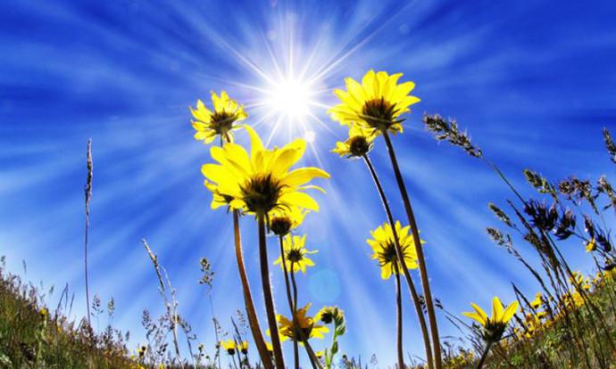 Сончево време со температура до 25 степени