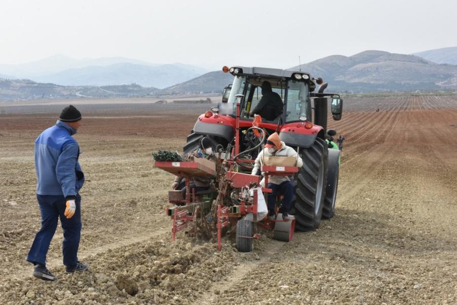 Земјоделците кои ги осигурале посевите имаат уште десет дена да се пријават за субвенции