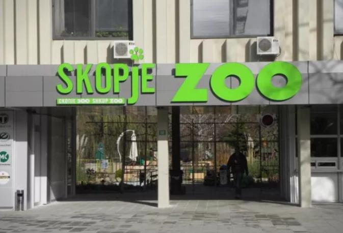 Бебе од редок вид на лемур се роди во скопската зоолошка градина