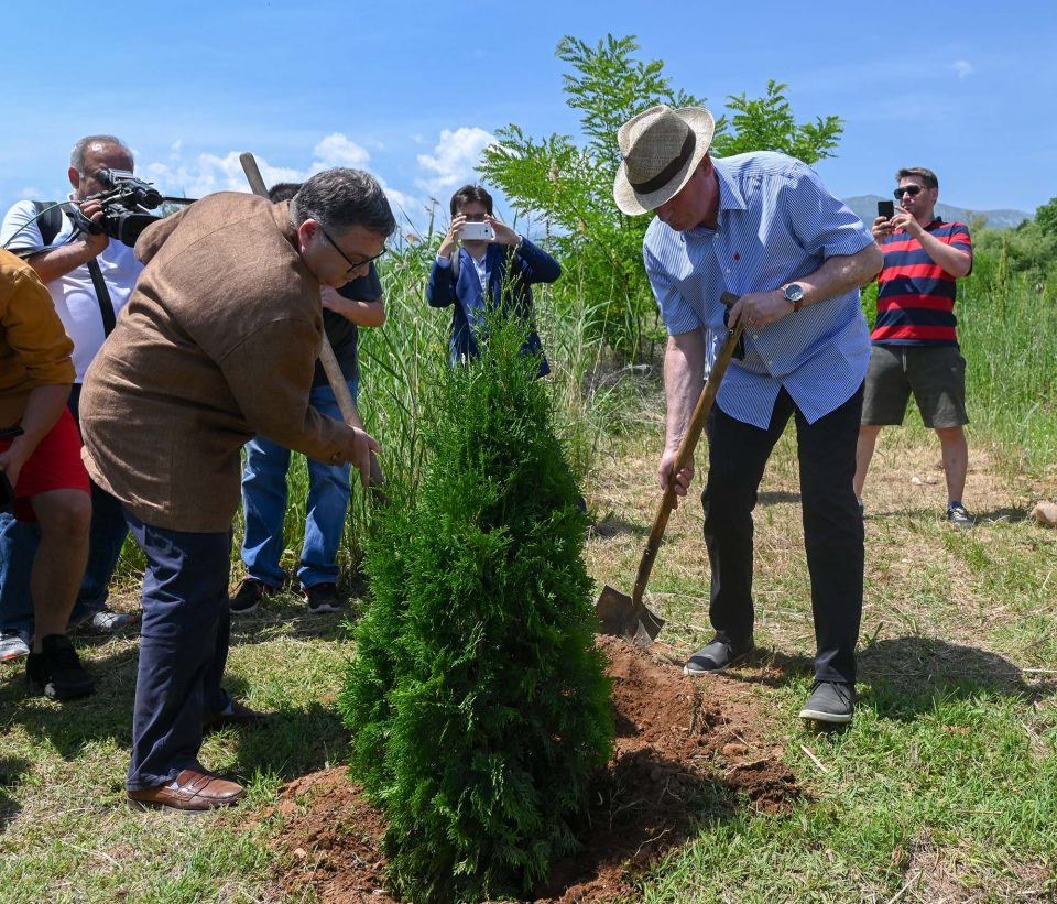 """""""Запознај ја Преспа"""": Засадени седум дрвја на иднината на плажата во Отешево"""