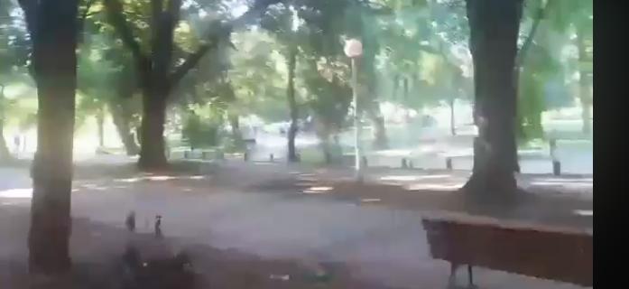 Нов обид за тепачка помеѓу полските навивачи во паркот Франкофонија