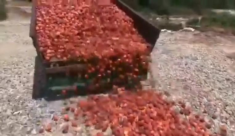 Ветија дека гајба праски ќе купуваат по 150-200 денари