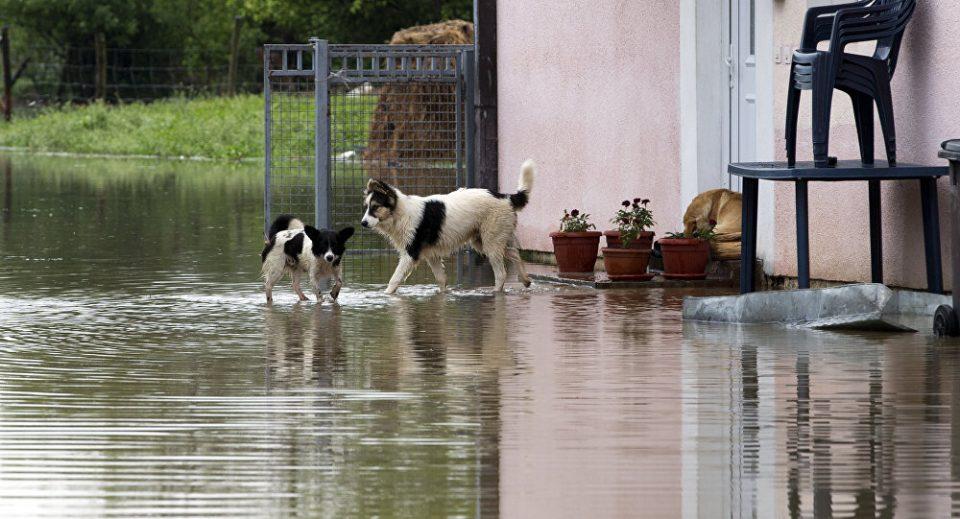 Поради поплави во Србија евакуирани пет лица