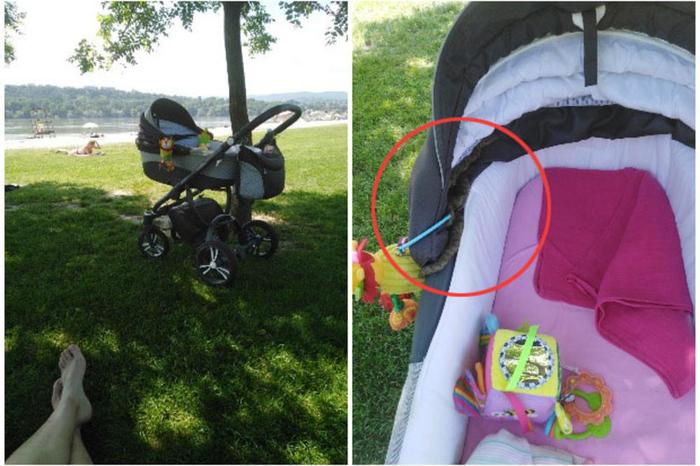 Змија се вовлекла во количката додека бебето спиело во неа