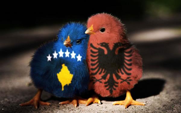 Албанија и Косово со заеднички дипломатски претставништва
