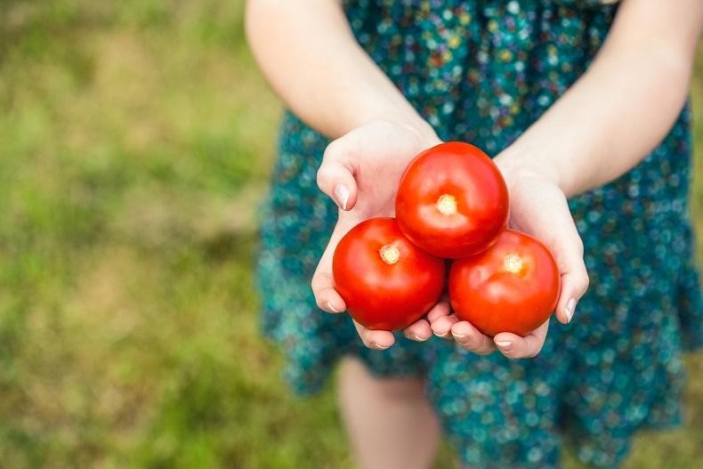 Диета со домати: Топите 5 кг неделно, најбрзо до бикини тело