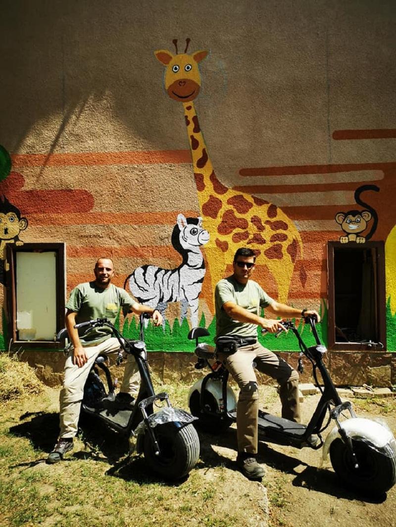 Зоолошка градина се опреми со нови електрични возила