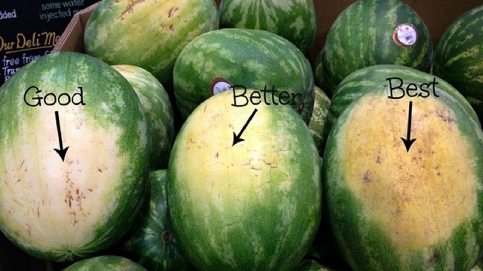 Пет чекори како да ја одберете најслатката лубеница