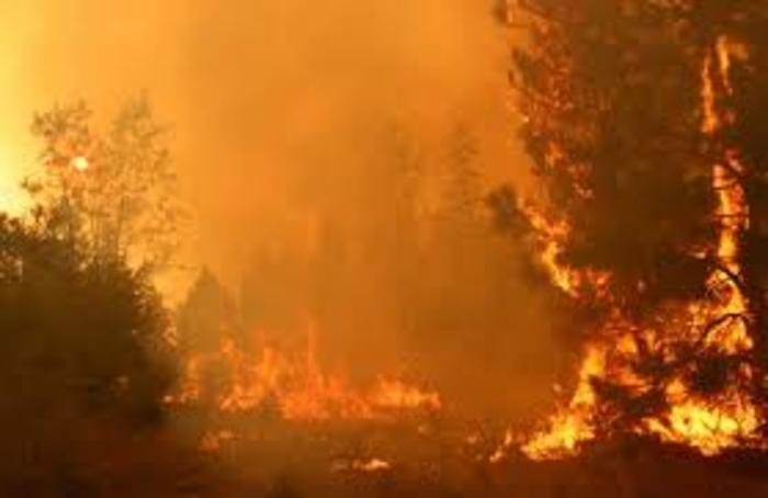 Пожар во предградие во западниот дел на Атика