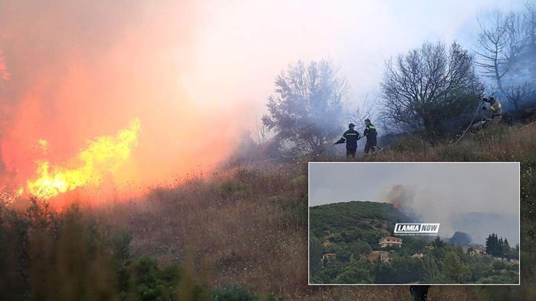 Шумски пожари во централна Грција