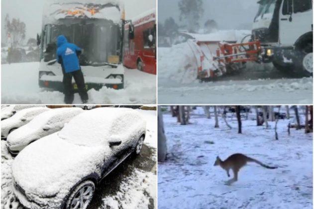 Европа се пржи, a Австралија под снег