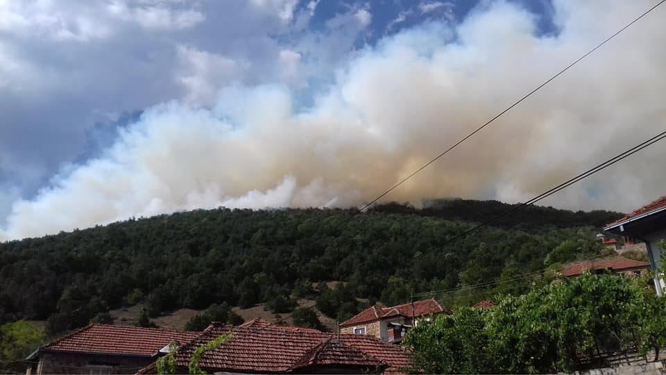 Во Велмеј камбаната бие за помош! Пожарот се доближува до првите куќи во селото