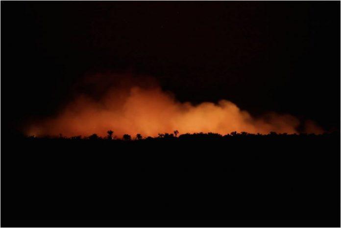 Стотици нови пожари ја пустошат Амазонија