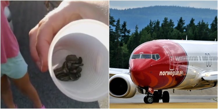 Делови од патнички авион паѓале како дожд од куршуми над Рим