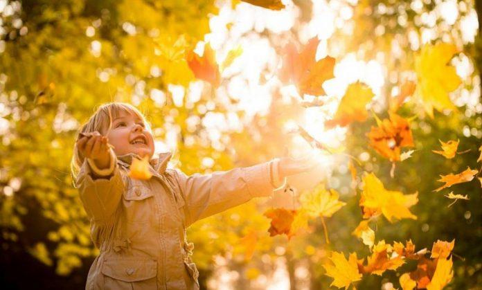 Летни температури во есен