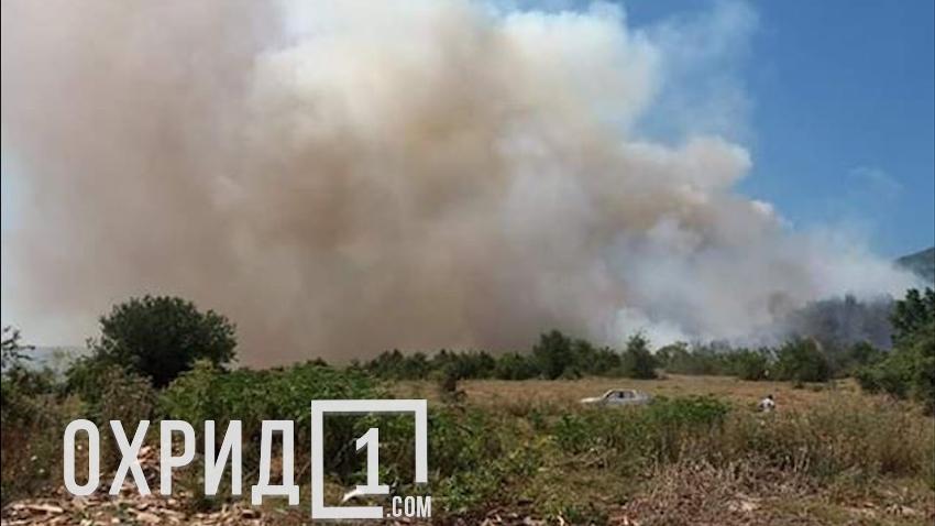 Огнот се приближува до куќите: Состојбата во Дебрца е алармантна