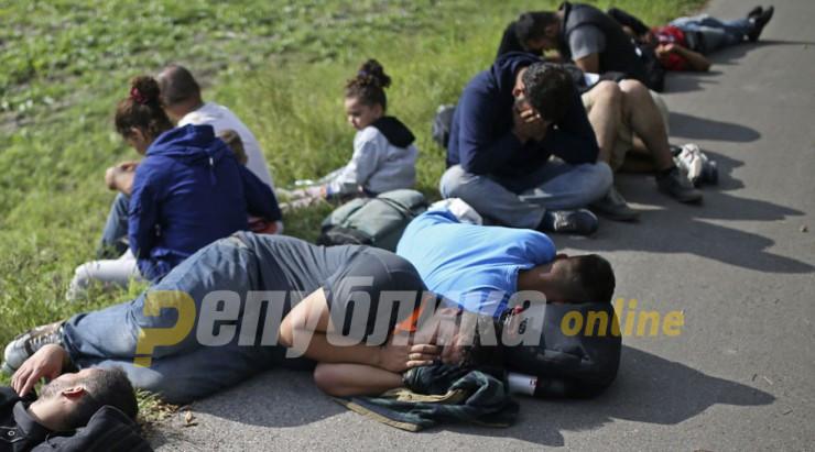 Пронајдени 30 мигранти кај Струмица
