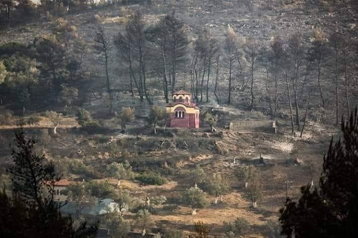 Илјадници дрва изгорени, а Манастирот остана недопрен