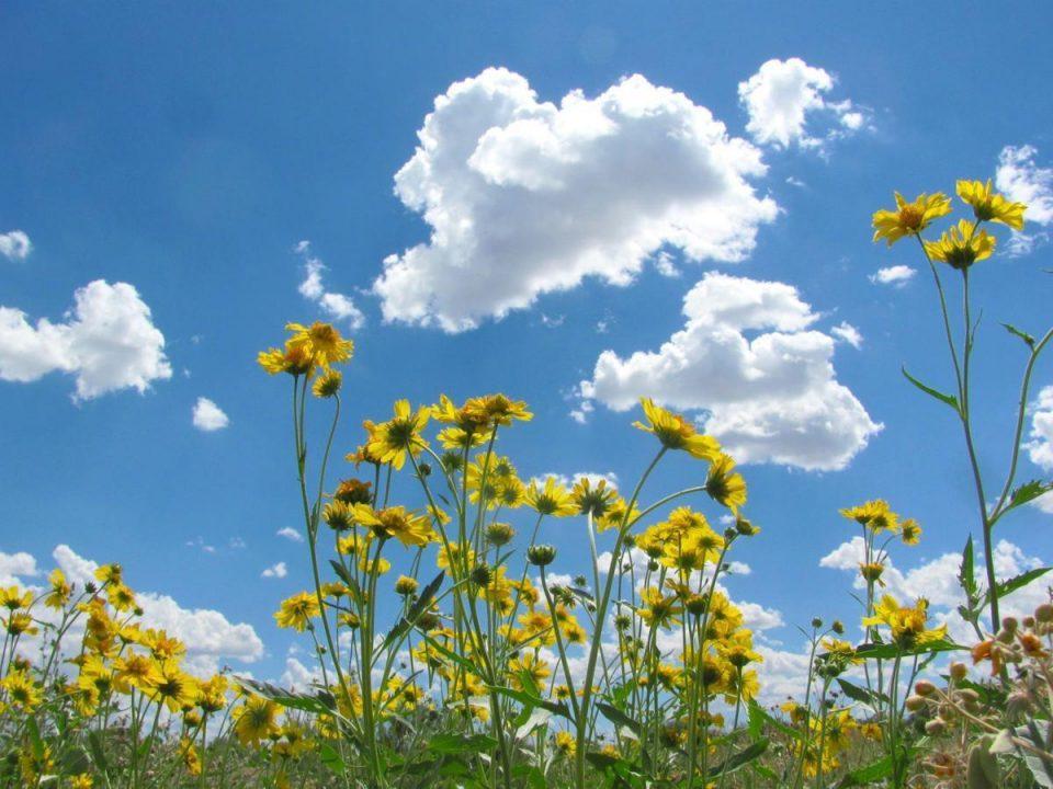 Времето променливо облачно со сончеви периоди