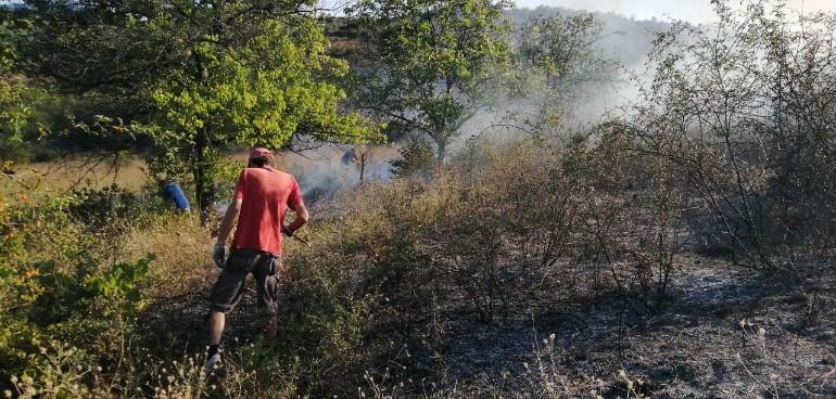 Изгаснат пожарот кај Пинтија