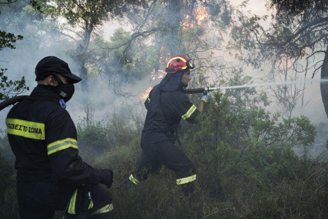 Грција бара помош од Европа за гаснење на пожарот на Евија