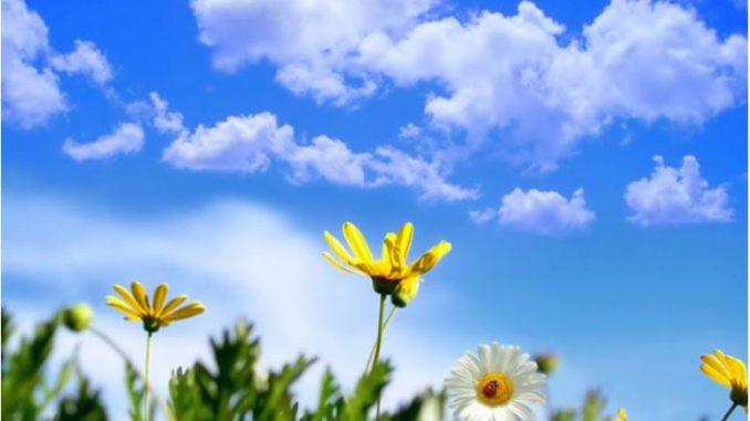 Сончево и топло со слаб северен ветер