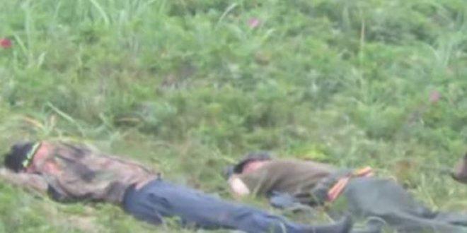 Заспале на ливада, а одеднаш еден од нив се штрекнал бидејќи почувствувал нешто на ногата…