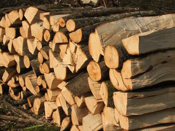 Жителите да внимаваат кога непознати лица им нудат огревни дрва за пониска цена