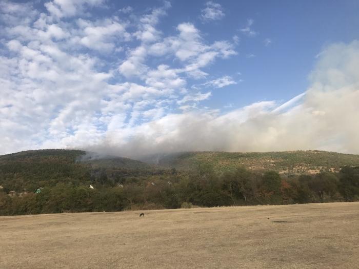 Шумски пожар кај кочанското село Пантелеј