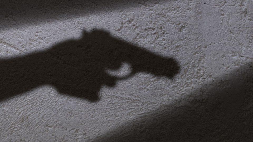 Тинејџер си го уби семејството, меѓу починатите и шестмесечниот брат