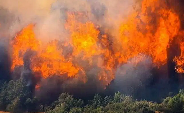 Километарски колони од Прилеп кон Кавадарци, поради пожар заглавените граѓани бараат сместување во Прилеп