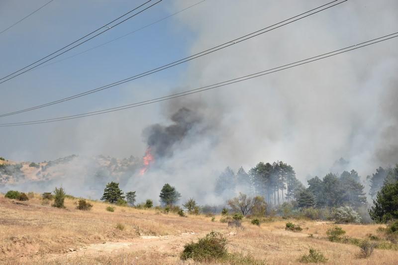 Нов пожар вечерва во Скопје