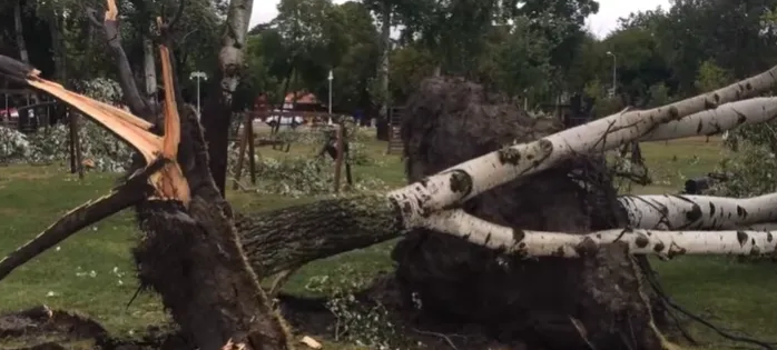 Хаос во Суботица по силниот дожд и град